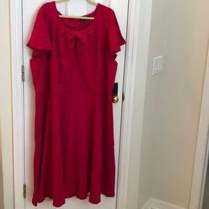 Beautiful Pink Dress by Eloquii, NWT, 3x